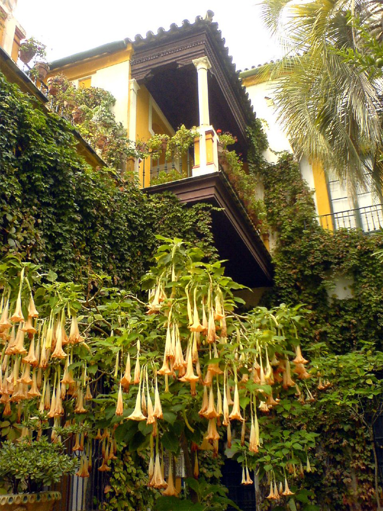 Casa de pilatos palacio de medinaceli monumentos de for Escaleras para caminar fuera del jardin