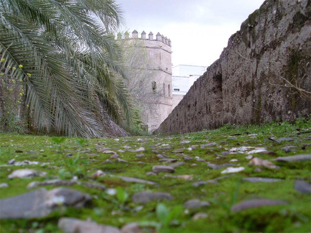 Torre_de_plata_desde_la_muralla